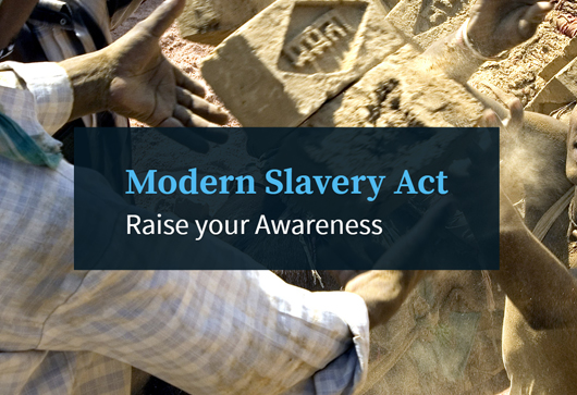 Modern Slavery: Raise your Awareness online course
