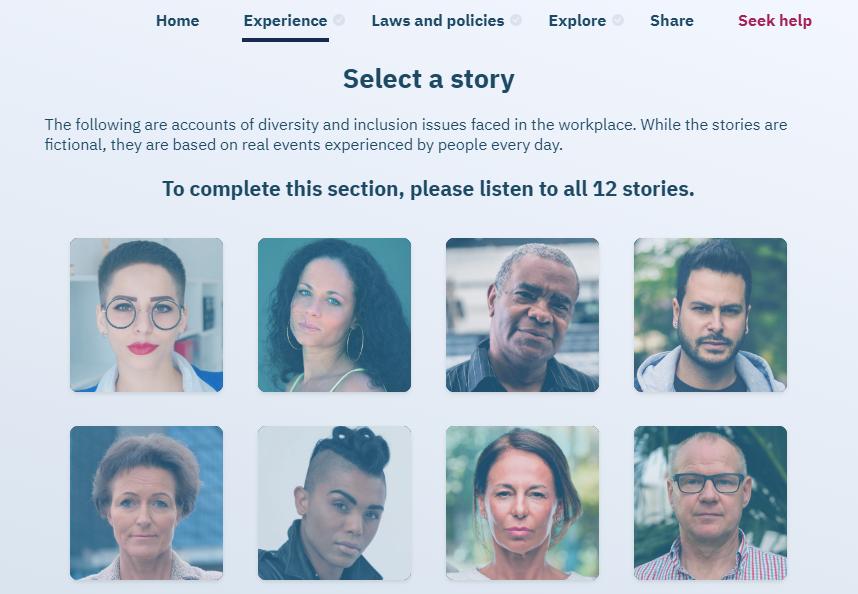 Screenshot from interactive diversity training