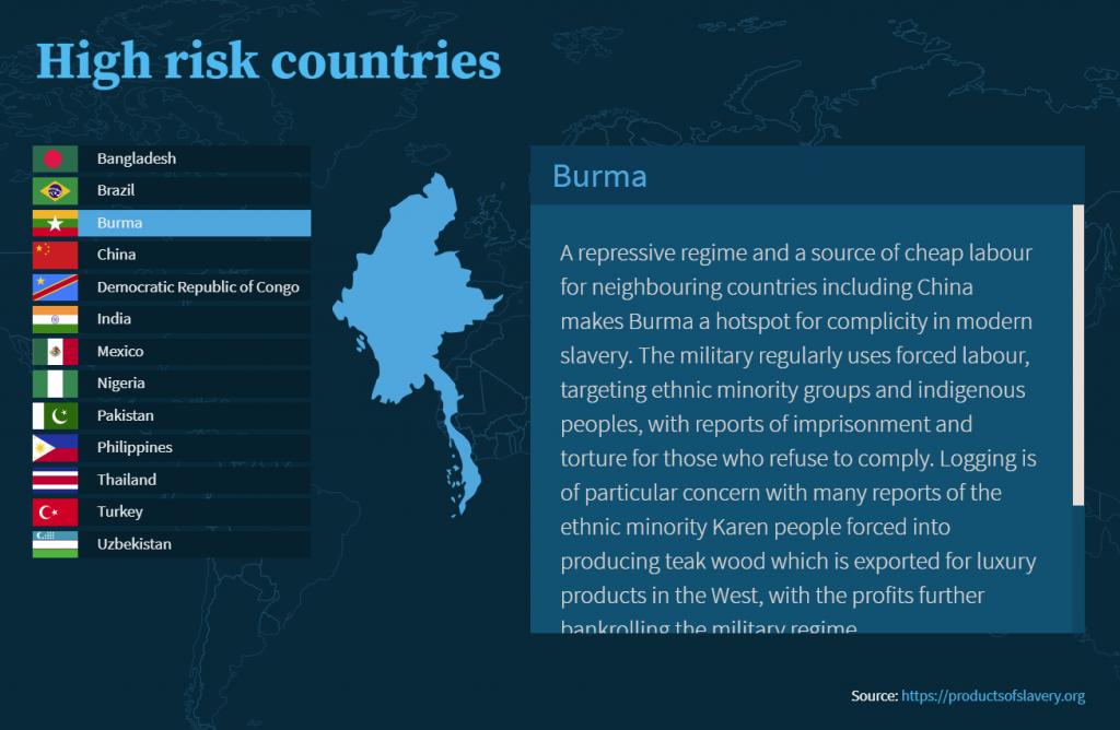Screenshot from an online modern slavery course